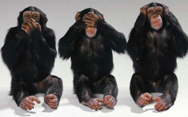 three-monkeys