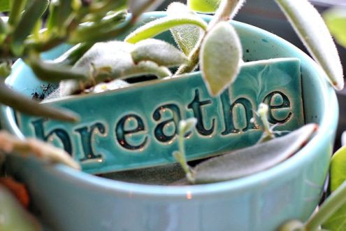 breathe.jpg.653x0_q80_crop-smart.jpg